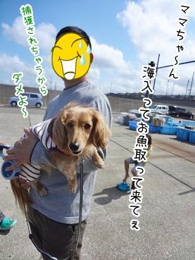 kinako2475.jpg