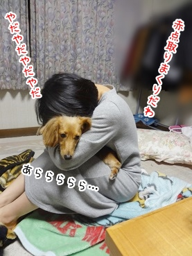 kinako2477.jpg