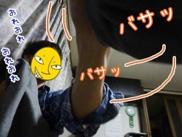 kinako2484.jpg