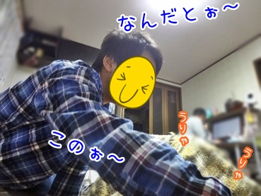 kinako2486.jpg