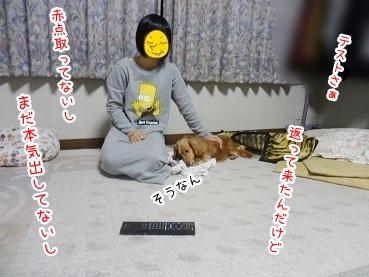 kinako2546.jpg