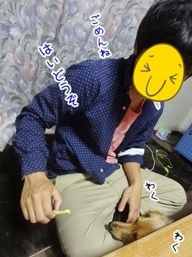 kinako2595.jpg