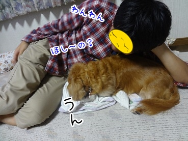 kinako2619.jpg