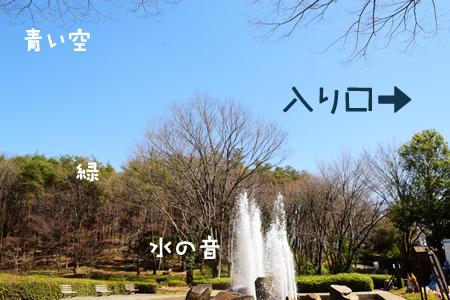 DSC_00152.jpg