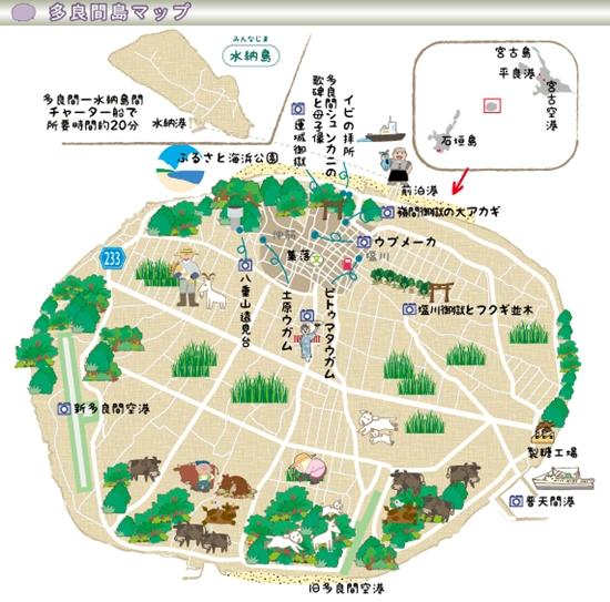 tarama-4.jpg