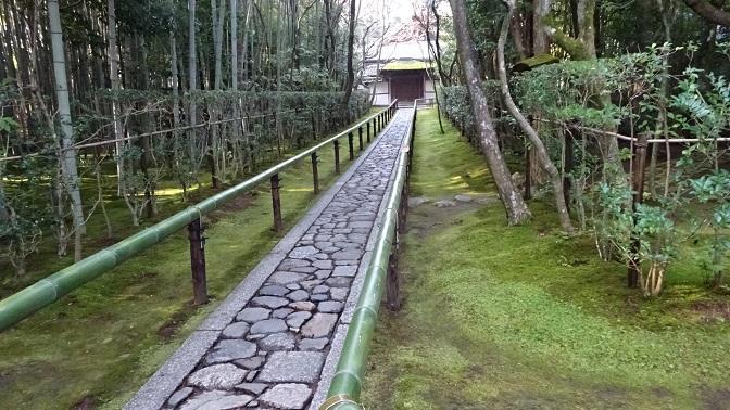 DSC05993 - コピー高桐院