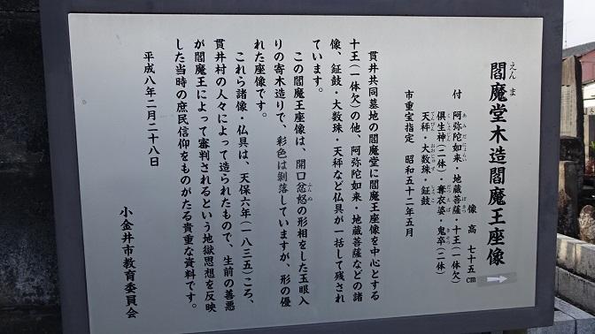 DSC07179 - コピー