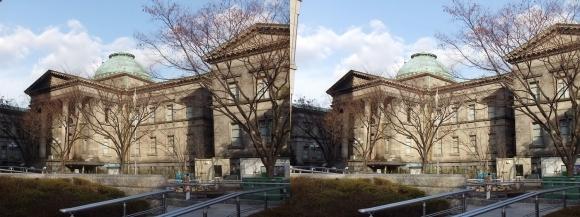 大阪府立中之島図書館(平行法)