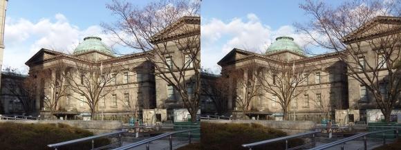 大阪府立中之島図書館(交差法)