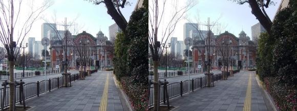 大阪市中央公会堂①(交差法)