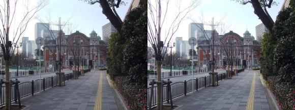 大阪市中央公会堂①(平行法)