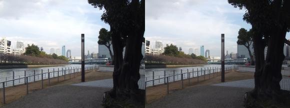 中之島公園①(交差法)