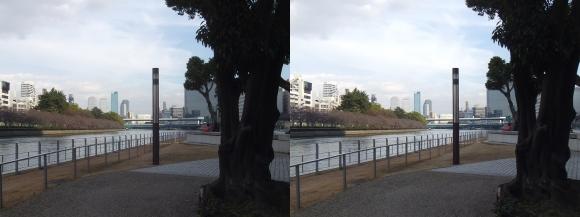 中之島公園①(平行法)