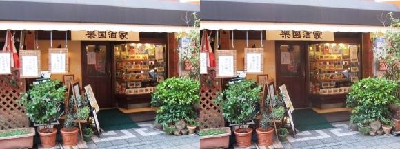 神戸南京町楽園酒家(交差法)