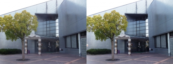 赤穂市立歴史博物館①(平行法)