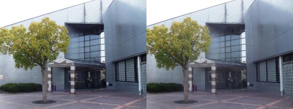 赤穂市立歴史博物館①(交差法)