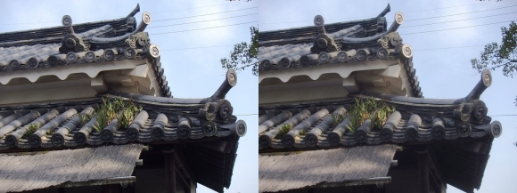 赤穂大石神社 大石内蔵助邸址②(交差法)