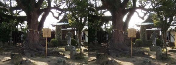 赤穂大石神社 大石内蔵助邸址庭園②(交差法)