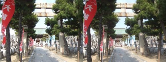 赤穂大石神社 参道の鳥居から神門(交差法)