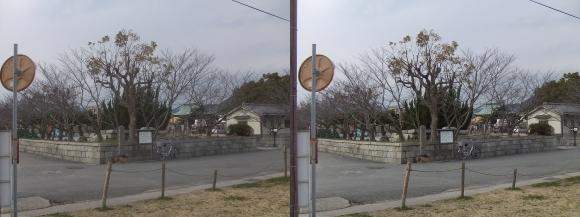 赤穂大石神社 遠景(平行法)
