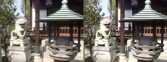 花岳寺 浅野家霊廟の狛犬(平行法)