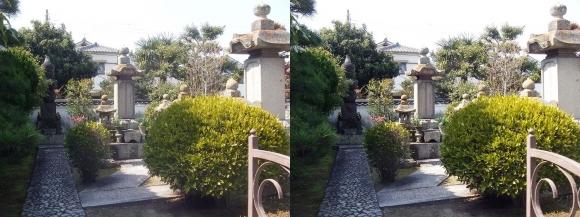 花岳寺 森家の墓(平行法)