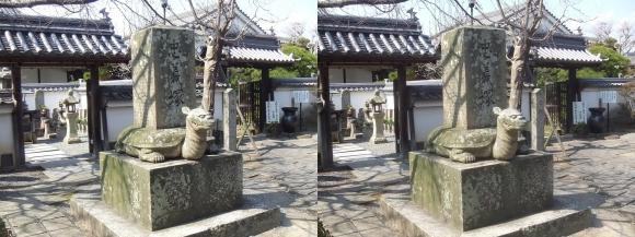 花岳寺 忠義塚①(交差法)