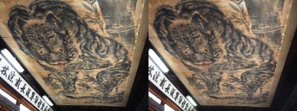 花岳寺 本堂 天井の大額「竹に虎」(交差法)