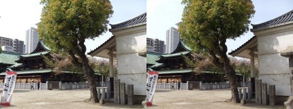 大阪天満宮⑤(交差法)