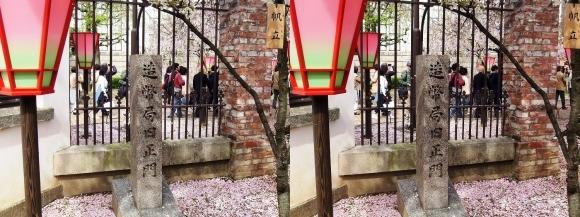 造幣局 旧正門(交差法)