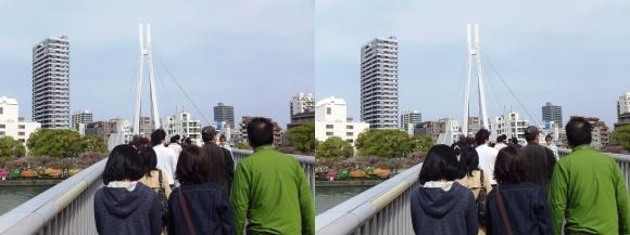 川崎橋(平行法)