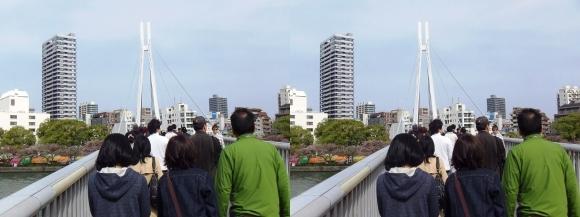 川崎橋(交差法)