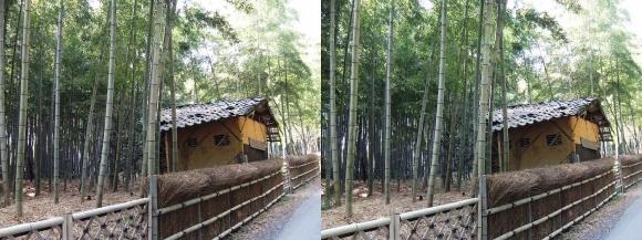 竹の径⑥(平行法)