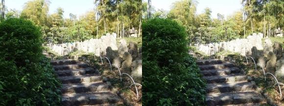 竹の資料館 石仏群①(平行法)