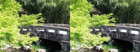 竹の資料館 百々橋③(平行法)