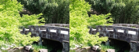 竹の資料館 百々橋③(交差法)