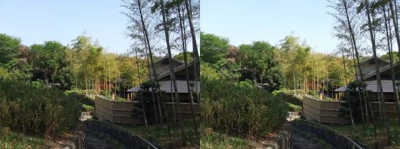 竹の資料館 回廊式庭園③(平行法)