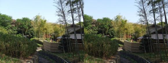 竹の資料館 回廊式庭園③(交差法)