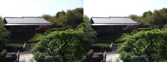 竹の資料館 回廊式庭園②(平行法)