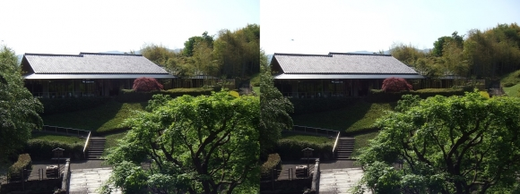 竹の資料館 回廊式庭園②(交差法)