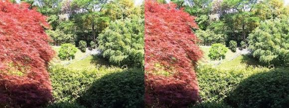 竹の資料館 回廊式庭園①(平行法)