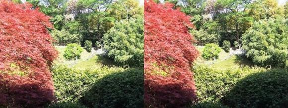 竹の資料館 回廊式庭園①(交差法)