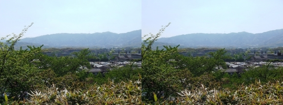 京都市洛西竹林公園 洛西ニュータウン(交差法)