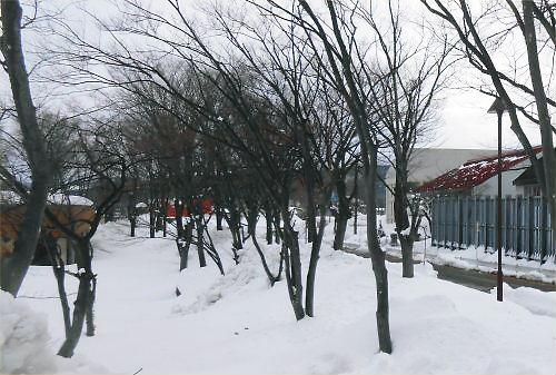 02 500 20150104 朝:新井高旧体育館