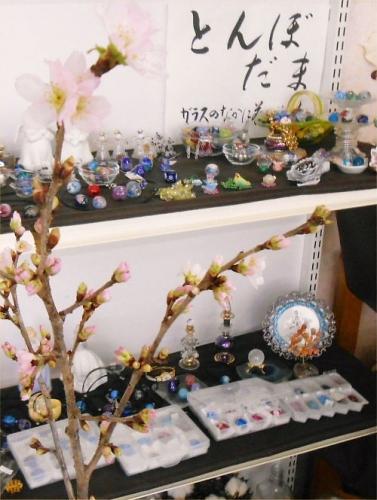 05 500 20150108 桜atとんぼ玉コーナー