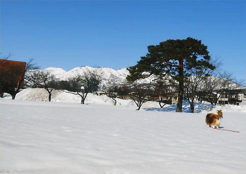 03 500 20150221 ERie凍み渡り、南場連山