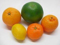 00b 250 ミカンと orange