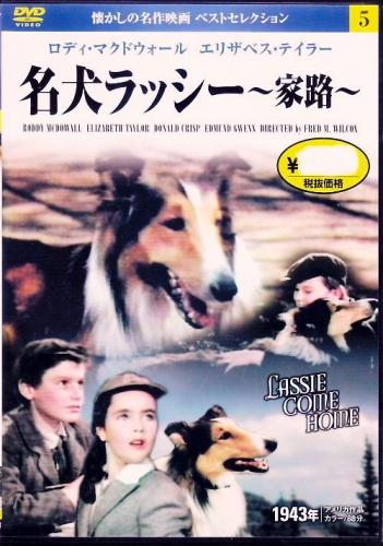 05 500 Lassie DVD