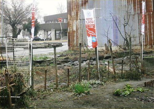 05 500 20150406 LL-garden 雪解け直後Chaby-flags