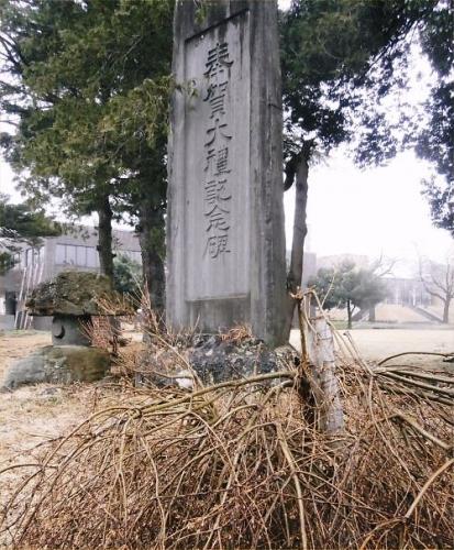 06 500 20150406 雪折れドウダンツツジwith大礼記念碑